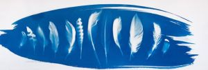 "Gabrielle Radiguet Meadow series, Plume 14"" x 31"" Cyanotype on watercolour paper £325"